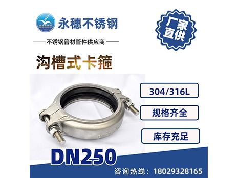 沟槽式卡箍DN250