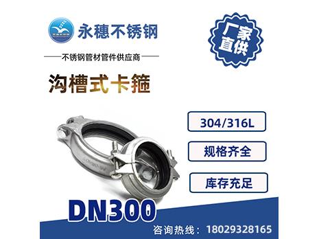 沟槽式卡箍DN300